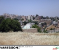 امین جبل عاملی-احمد